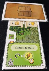 Cultivando maíz